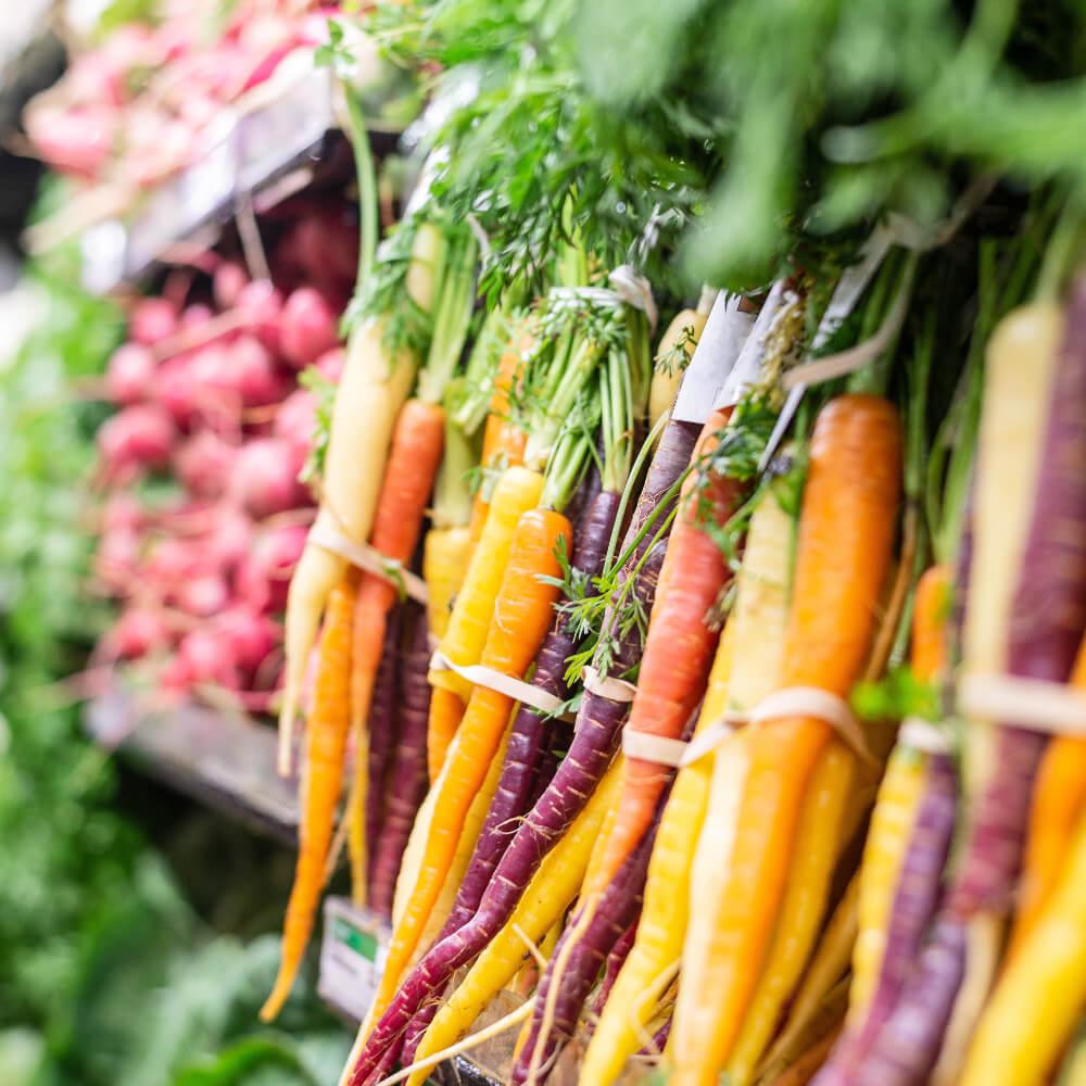 Vitaminreiche Karotten, Schutz für die Haut